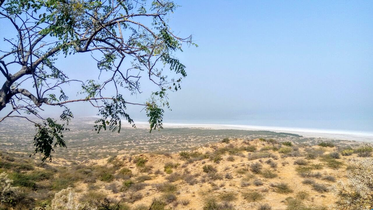 Run The Rann Landscape